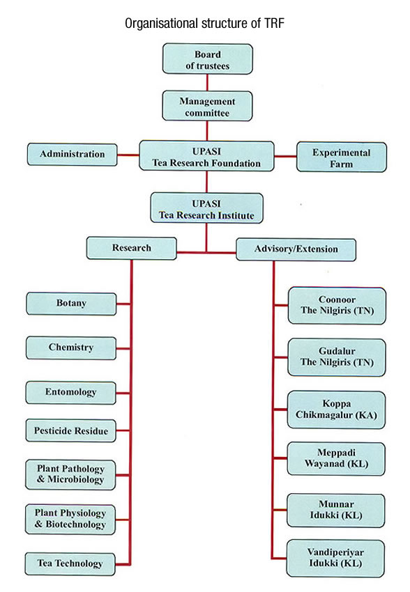 Company Structure Organization Chart | 2017 - 2018 Best Cars Reviews
